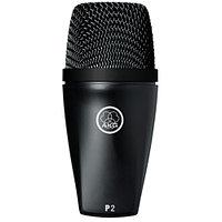 AKG P2 3100H00150 микрофон (3100H00150)