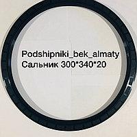 Сальник 300*340*20