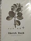 Скетчбук для зарисовок,А3 формат, 264х386 мм, 50 листов, фото 2