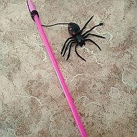 Дразнилка с пауком