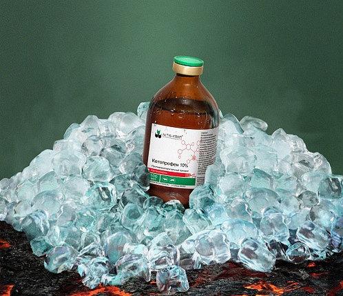 Кетопрофен 10% 100мл Нита-Фарм, фото 2