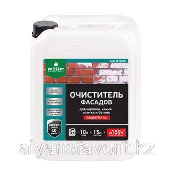 SALT CLEANER - удалитель высолов - концентрат. 5 литров.РФ, фото 2