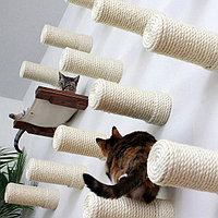 Когтеточки, Комплексы, Лежанки для кошек