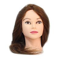 Болванка учебная для парикмахера ТМ-004 100% натур. волосы 60 см (темно-русый) №88129(2)
