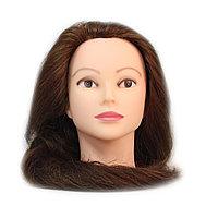 Болванка учебная для парикмахера ТМ-012 50% натур. волосы 80 см (светло-коричневый) №88181(2)