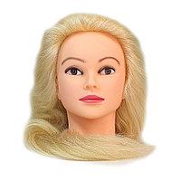 Болванка учебная для парикмахера ТМ-010 70% натур. волосы 70 см (блондин) №88204(2)