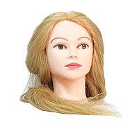 Болванка учебная для парикмахера ТМ-008 70% натур. волосы 70 см (светло-русый) №88211(2)