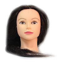 Болванка учебная для парикмахера ТМ-007 70% натур. волосы 70 см (темно-коричневый) №88242(2)