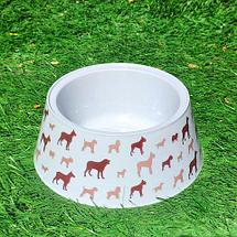 Контейнер с набором аксессуаров для корма «Покорми меня» 3-в-1 (для собаки), фото 3