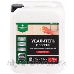 FUNGI CLEAN - удалитель плесени, концентрат. 5 литров. РФ