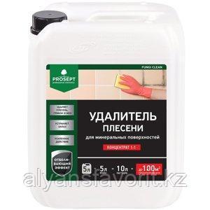 FUNGI CLEAN - удалитель плесени, концентрат. 5 литров. РФ, фото 2