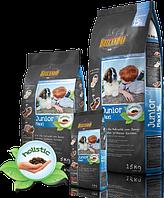 Корм Belcando Junior Maxi для щенков крупных пород от 4 месяцев (Птица с рисом) - 25 кг