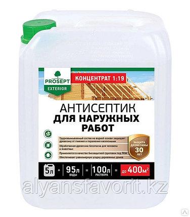 EXTERIOR - пропитка антисептик-концентрат для наружных работ. 5 литров.РФ, фото 2