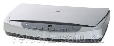 Сканер HP Europe 5590P (L1912A#B19)