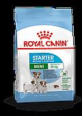 Корм Royal Canin Mini Starter для беременных кормящих собак и щенков мелких пород - 3 кг