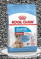 Корм Royal Canin Medium Starter для беременных кормящих собак и щенков средних пород - 16 кг