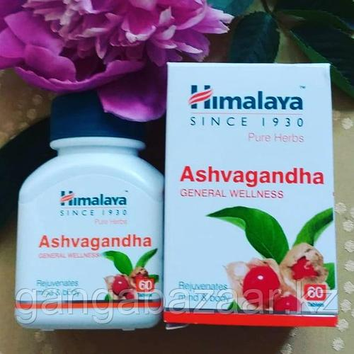 Ашваганда (Ashvagandha Himalaya) для энергии, выносливости и оздоровления, 60 табл