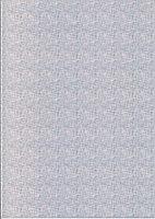 Голографическая фотобумага для сутруйной печати X-GREE PA260W-A4-10 COLOR NET LINES, фото 2