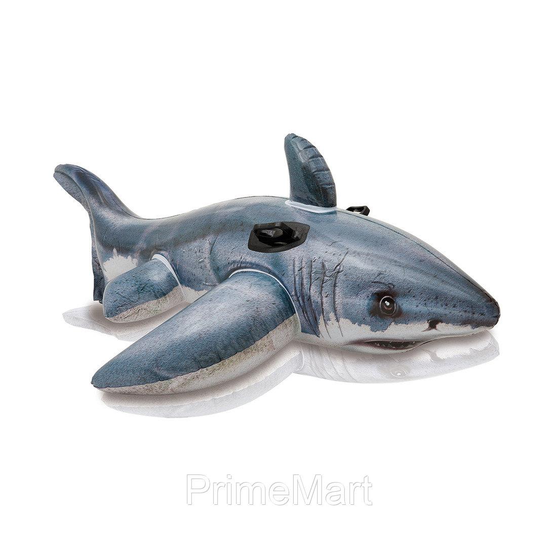 Надувная игрушка для катания верхом Большая Белая Акула 173 х 107 см, INTEX, 57525NP, Винил, Фотореалистичная печать, С ручками, Цветная коробка