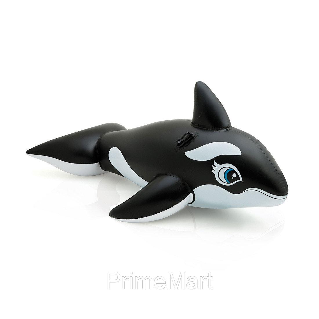 Надувная игрушка для катания верхом Касатка 193 х 119 см, INTEX, 58561NP, Винил, С ручками, Чёрно/белая, Цветная коробка