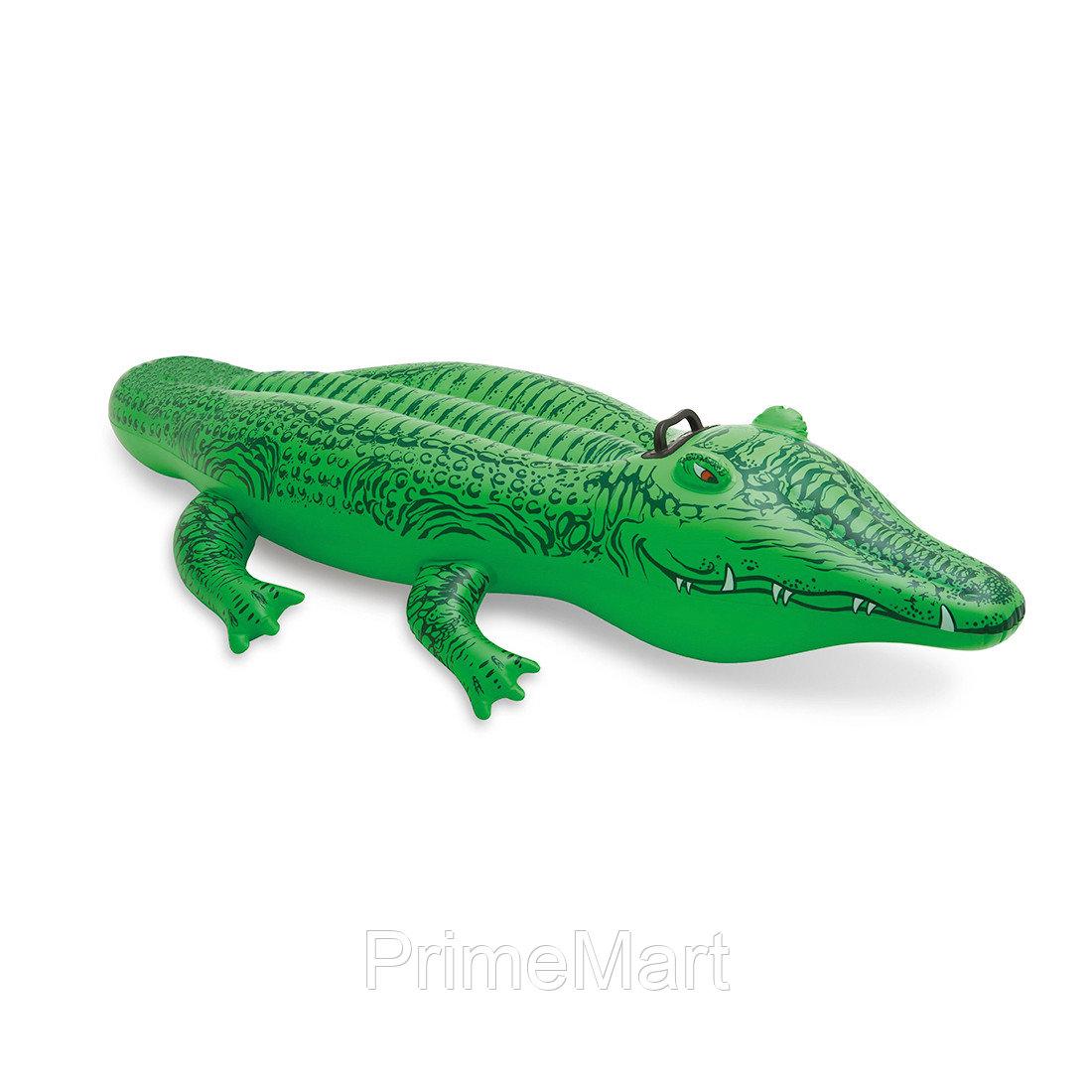 Надувная игрушка для катания верхом Крокодильчик 168 х 86 см, INTEX, 58546NP, Винил, С ручками, Зелёный, Цветная коробка