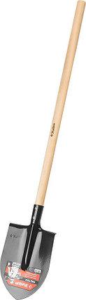 Лопата штыковая ЛКО, ЗУБР, 285x205x1420 мм, стальное полотно, черенок из березы высшего сорта (39570), фото 2