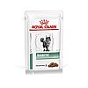 Royal Canin Diabetic Feline в соусе, влажный корм для кошек страдающих сахарным диабетом