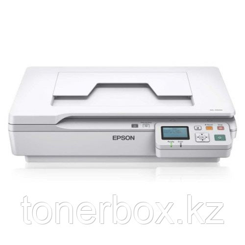 Планшетный сканер Epson WorkForce DS-5500N B11B205131BT (A4, Цветной, CCD)