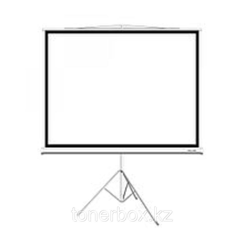 Экран Deluxe DLS-T244W