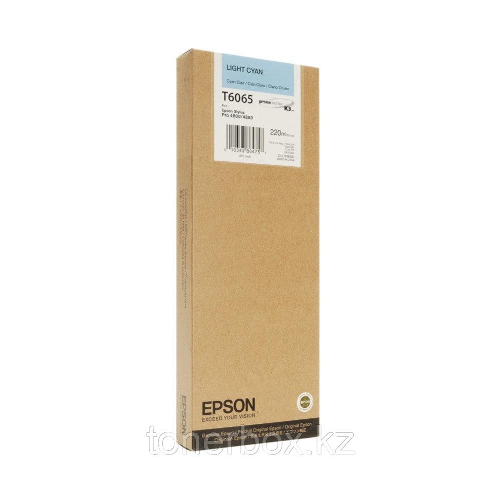 Струйный картридж Epson 6065 C13T606500