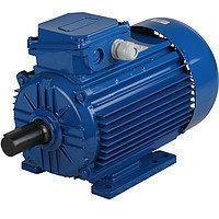 Асинхронный электродвигатель 0,75 кВт/1000 об мин АИР80А6, фото 2