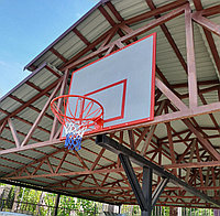 Баскетбольный щит с кольцом и сеткой