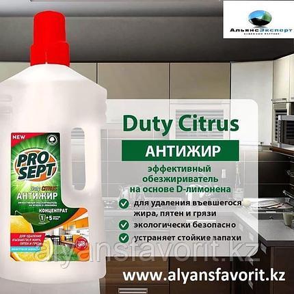 Duty Citrus - универсальное средство для обезжиривания поверхностей удаления запахов. 5 литров.РФ, фото 2