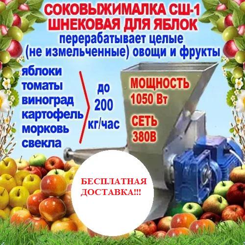 Шнековая соковыжималка для яблок и томатов не требующая очистки СШ-1(до 200 кг/ч), 220/380В