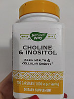 Nature's Way, Холин и инозитол, 500 мг, 100 капсул
