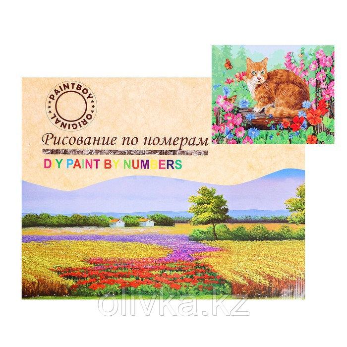 Картина по номерам на холсте «Котик на прогулке» 40х50 см