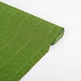 """Бумага гофрированная 622 """"Оливковый зелёный"""", 50 см х 2,5 м, фото 2"""