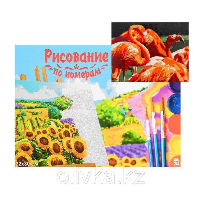 Картина по номерам на холсте 22 × 30 см, «Стая фламинго»