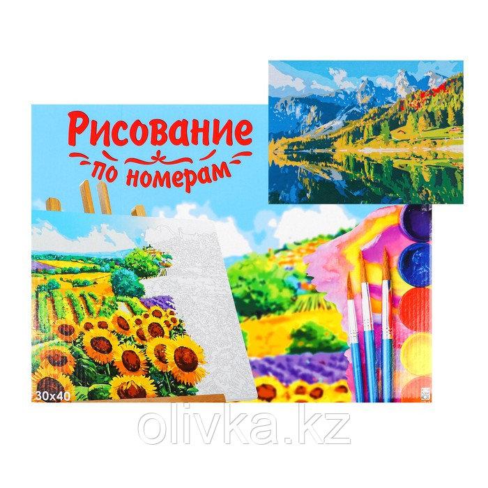 Картина по номерам на холсте, 30 × 40 см, «Зеркальное озеро»