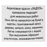 Краска акриловая художественная «Ладога», 220 мл, белила титановые, фото 5
