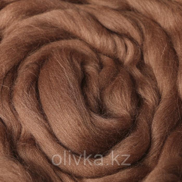 Гребенная лента 100% полутонкая шерсть 100гр (0860 древесный)