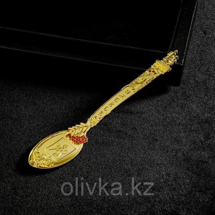 Ложка сувенирная «Ижевск»
