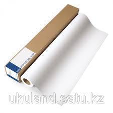 "Рулон 17"" Epson C13S045007 STANDARD Proofing Paper 17"""