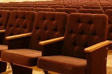 Театральное кресло Агин