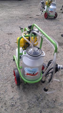 Доильный аппарат для коров 1 пульсатор 1 бидон, фото 2