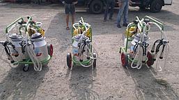 Доильные аппараты для коров Agrolead Турция, фото 2