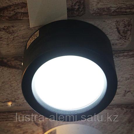 Светильник Фасадный Темиз 10вт BK, фото 2