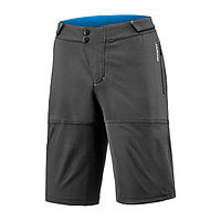 Giant шорты мужские Transfer