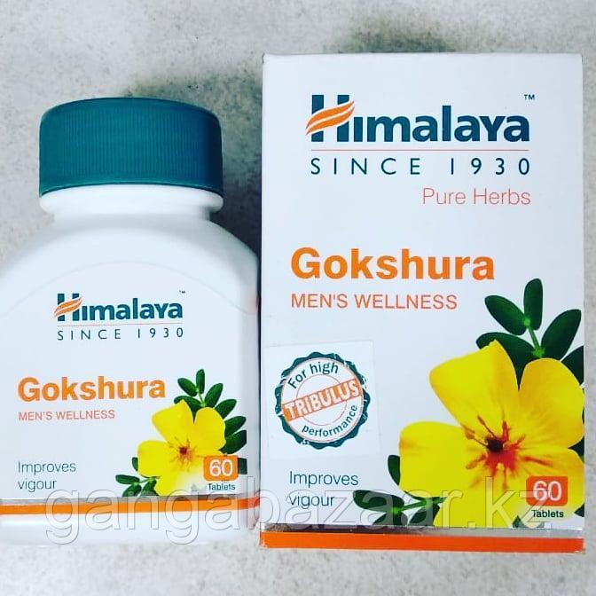 Гокшура (Gokshura Himalaya) для мочеполовой системы мужчин и женщин, 60 табл