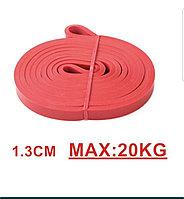 Эспандер 1-20 кг (1,3)